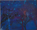 Trees in a night forest and blue stars
